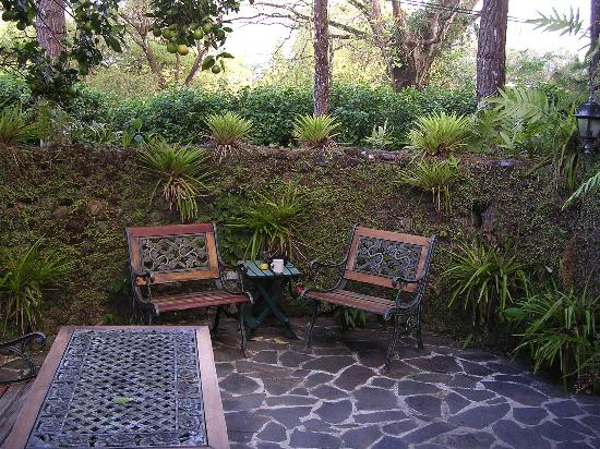 Park Eden Bed & Beakfast: Private terrace off Los Limoneros