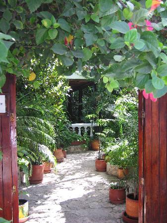 Paraiso Azul's -Casa De Gopala-bild