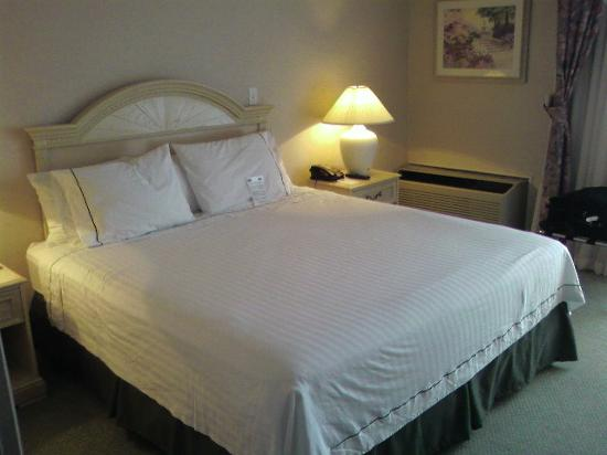 Fairfield Inn & Suites San Jose Airport: Bed was VERY comfortable