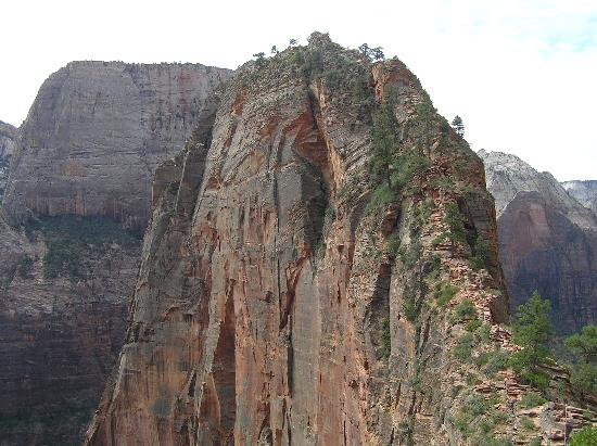 Angel's Landing: You go to the top of that!