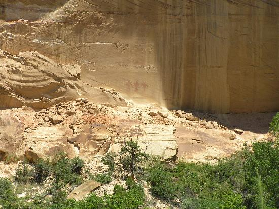Calf Creek Falls Recreation Area: Pictoglyphs on the cliff wall
