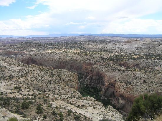 Calf Creek Falls Recreation Area: Calf Creek Falls canyon from Route 12