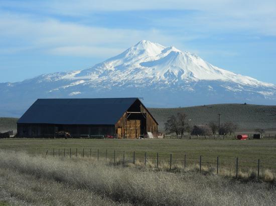 Obraz Mount Shasta