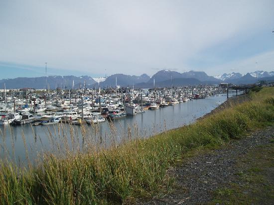 Homer, Alaska: Homer Spit Boat Harbor