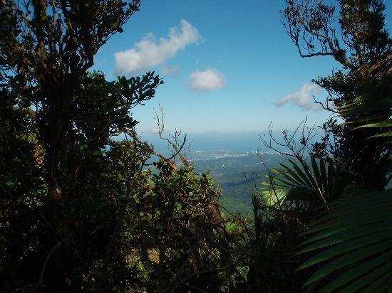 El Yunque Nationalwald, Puerto Rico: View from Hiking Trail over the water