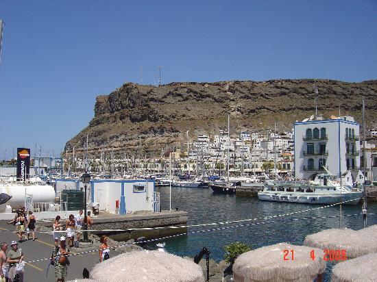 La Venecia de Canarias : The Harbour