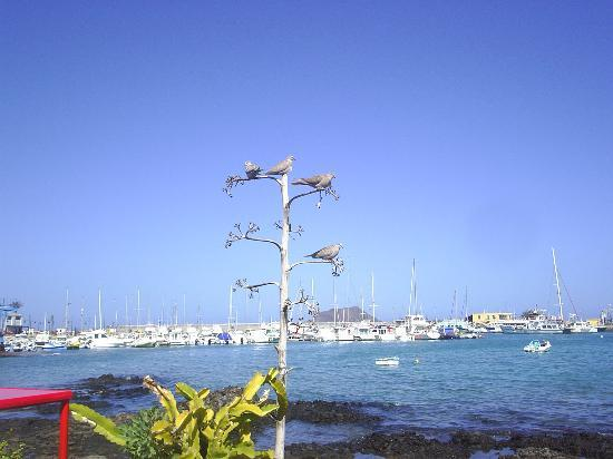 View of harbour, Corralejo, Fuerteventura