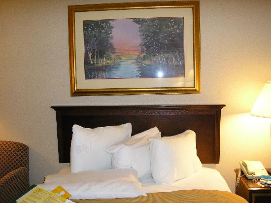 Holiday Inn Gaithersburg: Bed