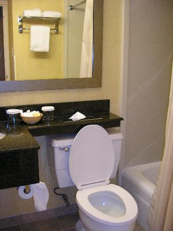 Holiday Inn Gaithersburg: Bathroom