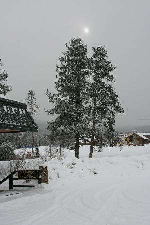 BEST WESTERN Alpenglo Lodge: view from behind the hotel