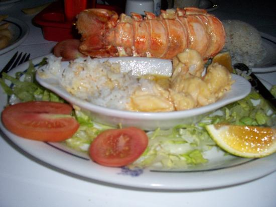 Hotel Casablanca: Lobster at Mr Carringtons!