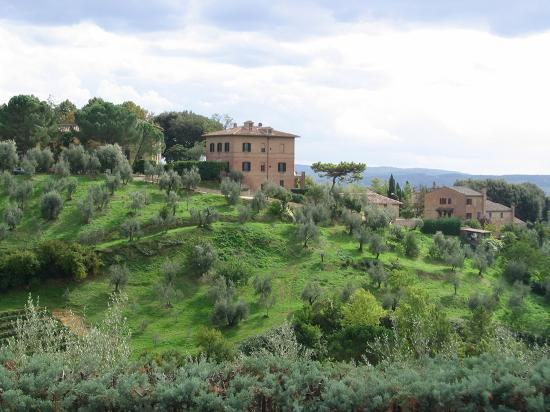 B&B San Francesco: Tuscan countryside