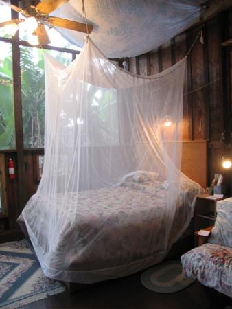 "Pomaika'i ""Lucky"" Farm B&B: the inside with insect net (use it)"