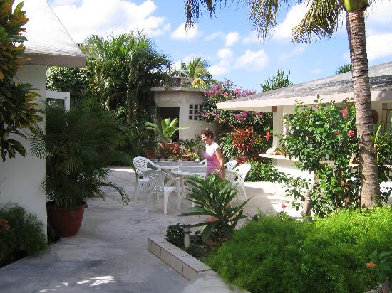 Baldwin's Guest House Cozumel: Kathy (always moving) crossing the breakfast area and outside kitchen.