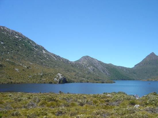Cradle Mountain-Lake St. Clair National Park-billede