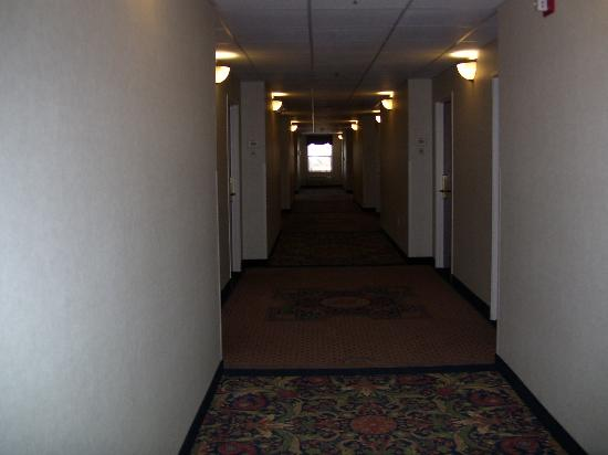 Quality Inn & Suites Patriots Pt.: Nicely appointed corridor