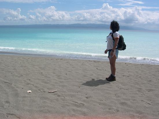 Iguana Lodge: Playa preciosa cerca del hotel.