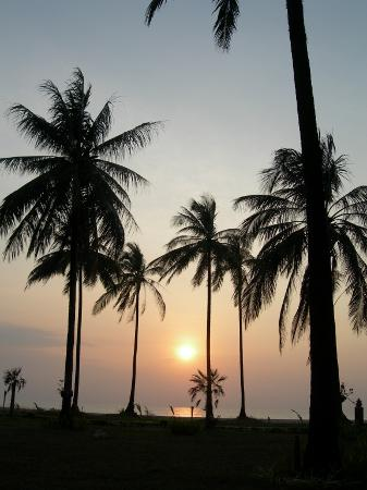 Khaolak Orchid Beach Resort: The sunset from the hotel is to die for!
