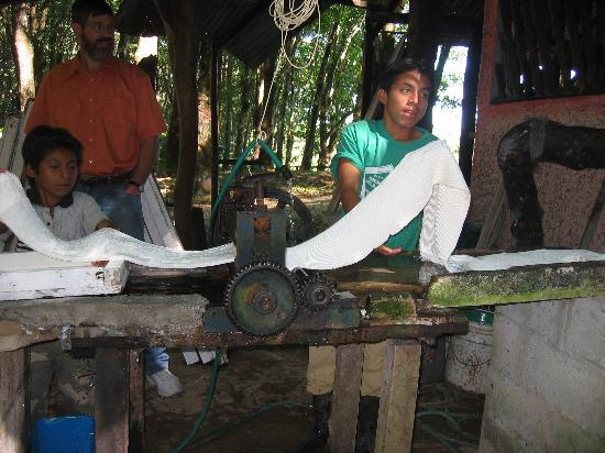 Cabanas Safari: pressing rubber