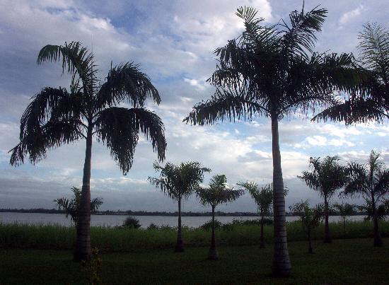Torarica Hotel & Casino : One view from gardens