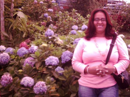 Nidal de nubes: En el Jardín