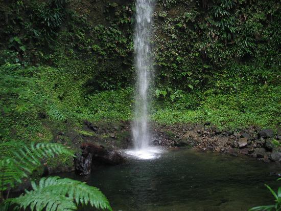 كاليبيشي لودجز: Spany's Falls
