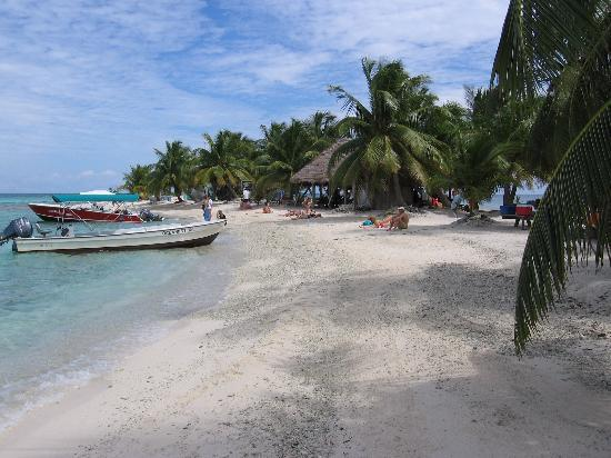 Paradise Vacation Hotel : Laughing Bird Caye National Park, scuba and snokelling site
