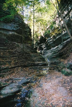 Utica, IL: Walking through to a canyon