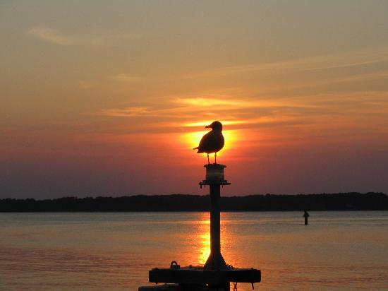 Hilton Head, Carolina Selatan: Sunset at Harbour Town!