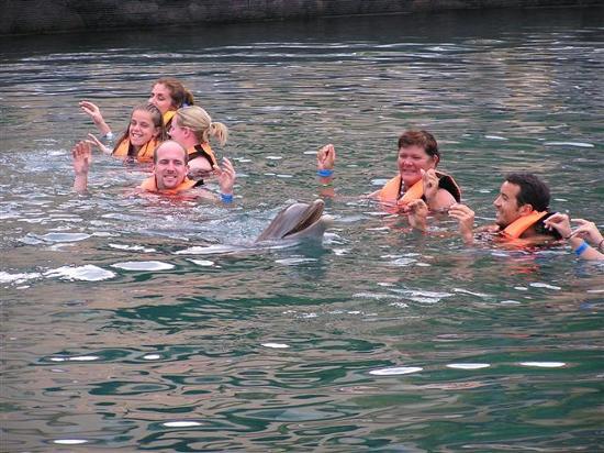 Chac Hal Al Condominiums: dolphins