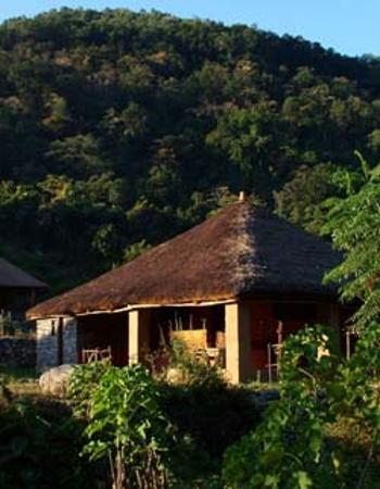Best Wilderness Resort in India