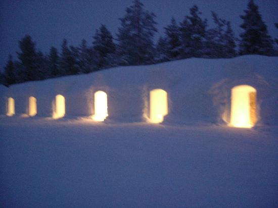 Glass thermal igloo - Picture of Kakslauttanen Arctic Resort
