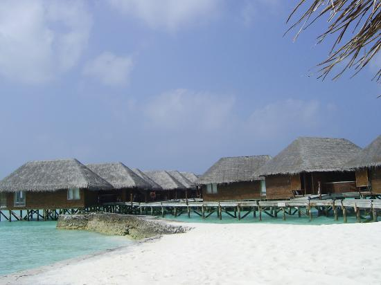 Veligandu Island Resort & Spa: Water Villas