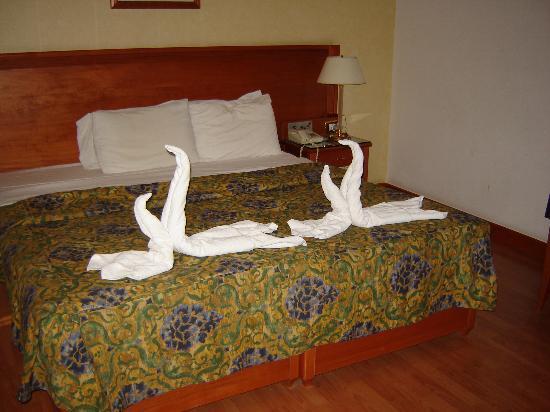 Photo of Hotel Estrella del Alemar Loredo