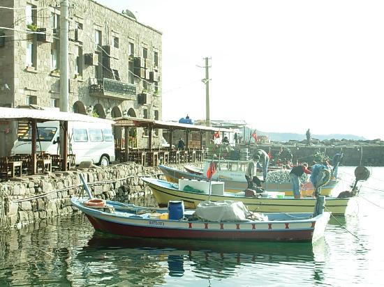 Yildiz Saray Hotel: Fishing boats of Assos in the Iskele Harbour