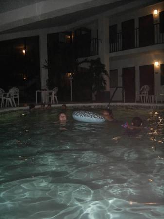 Palmetto Inn & Suites: indoor pool