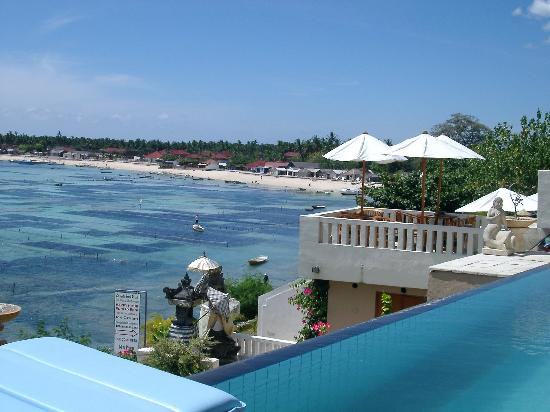 Coconuts Beach Resort: The view from the pool!