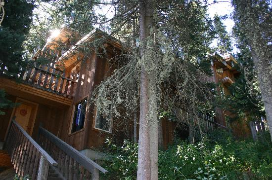 A Teton Tree House: View of the Tree House from the 96 steps from car park area