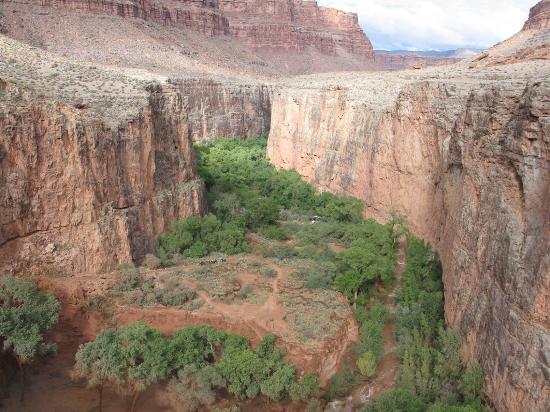 Havasu Canyon: View of campground from Havasu