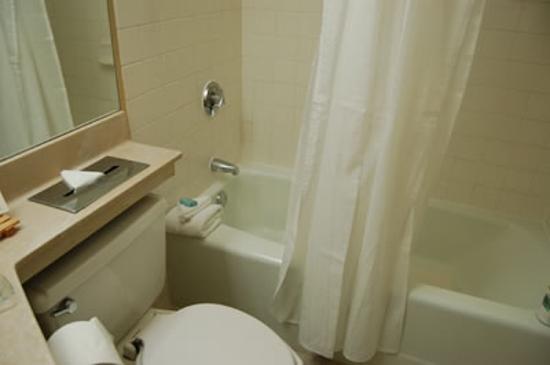 Holiday Inn Los Angeles International Airport: The bathroom