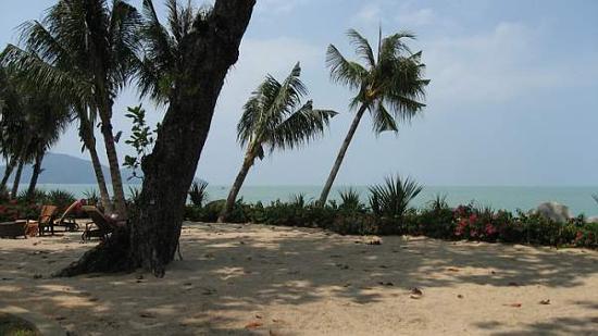 Shangri-La's Rasa Sayang Resort & Spa: Hotel Beach