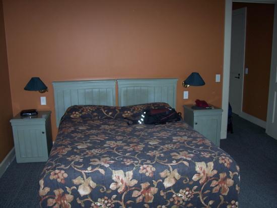 858 George Street Motel: Bed