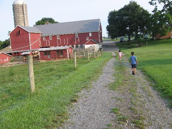 Manheim, PA: Rear view of farm