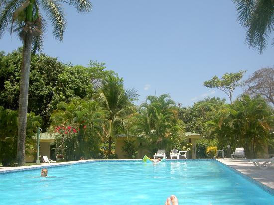 Villas Estrellamar: The Hotel Pool - Water, Palms, 40oC, and Tropical Birds