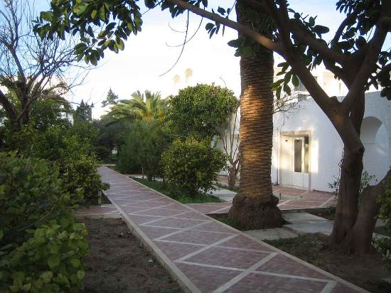 Le Hammamet Hotel : Path to the accommodation