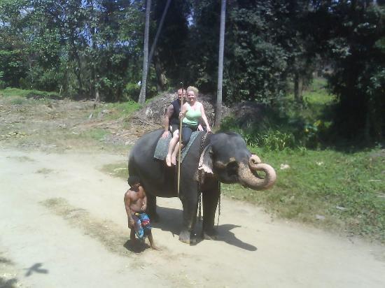 Kandy, Sri Lanka: elephant sanctuary