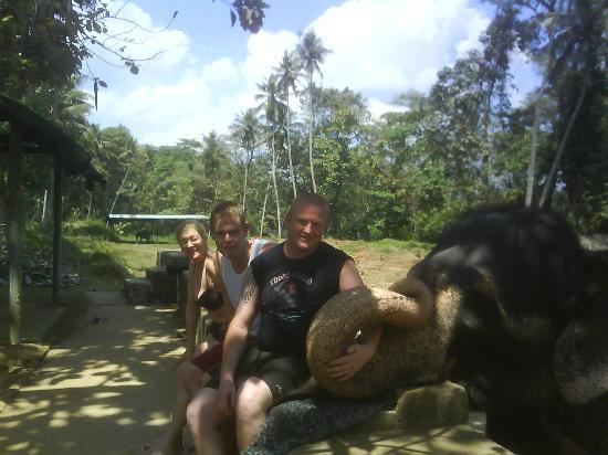 Kandy, Sri Lanka: heffa lump