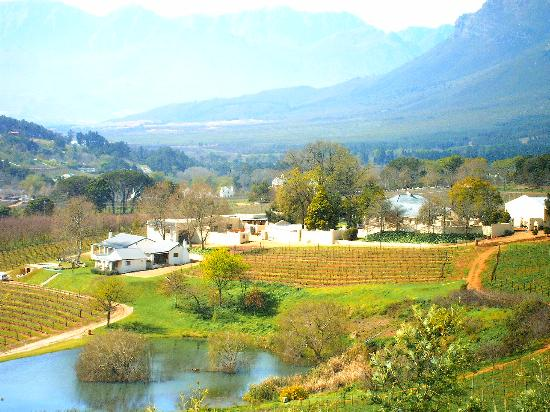how to get to stellenbosch from cape town