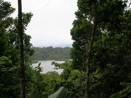 La Loma Jungle Lodge and Chocolate Farm: View from the Top