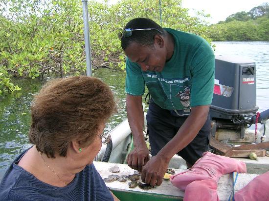 La Loma Jungle Lodge and Chocolate Farm: Luis preparing fresh oysters